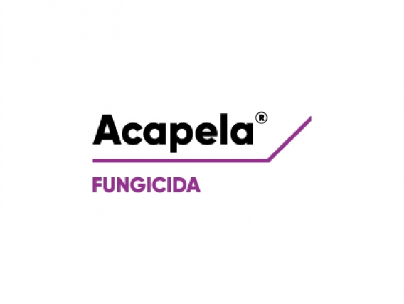 Fungicida Acapela® Picoxystrobin - Corteva