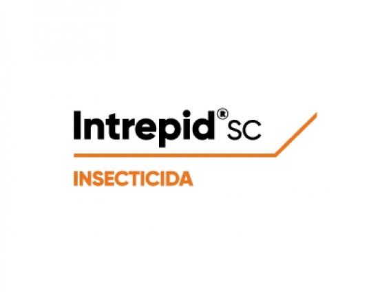 Insecticida Intrepid® Metoxifenocide - Corteva