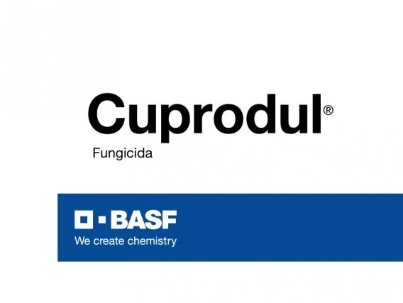 Fungicida Cuprodul®