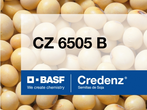 Soja Credenz CZ 6505 B