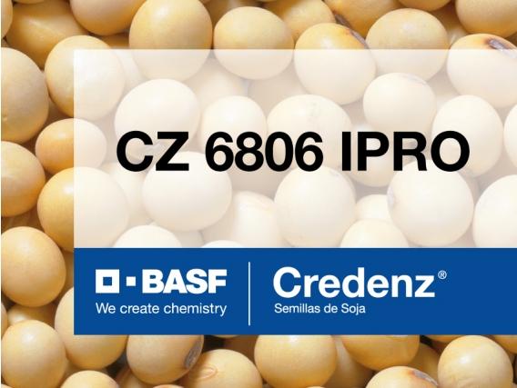Soja Credenz CZ 6806 IPRO