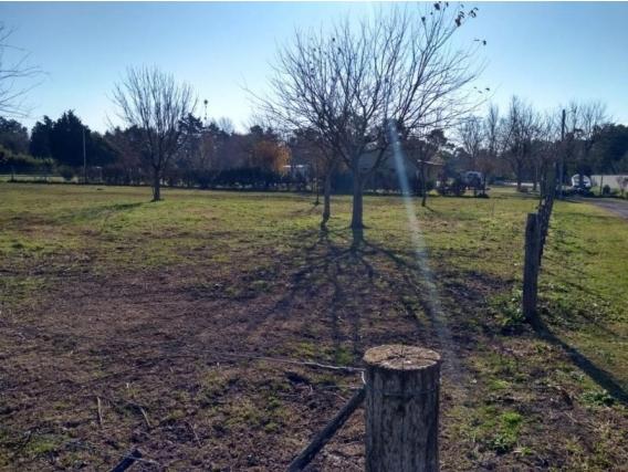 Lote De 1600 M2. Zona De Quintas. Chascomus. Bs. As.