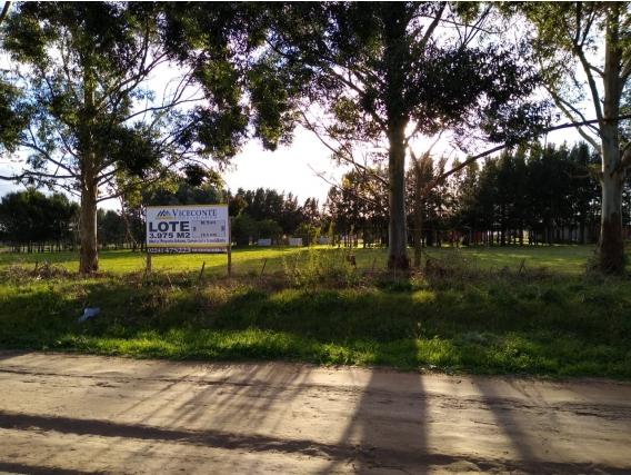 Lote De 3975 M2. Ideal Inversión.gral. Belgrano. Bs. As