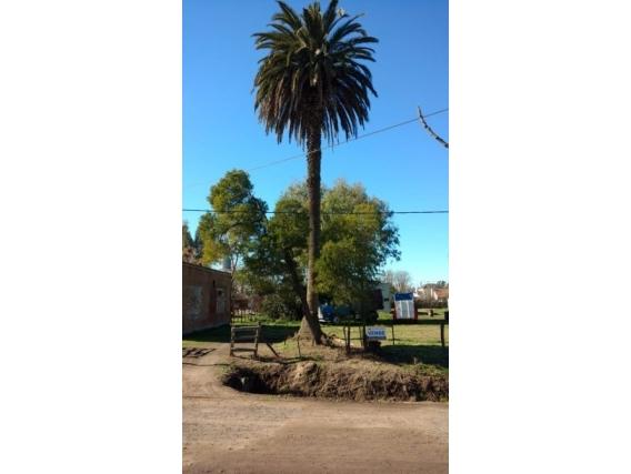 Lote De 403 M2. Calle Luis Giles. Ranchos. Bs. As.