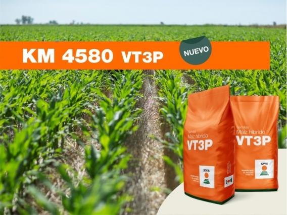 Maíz KM 4580 VT3P