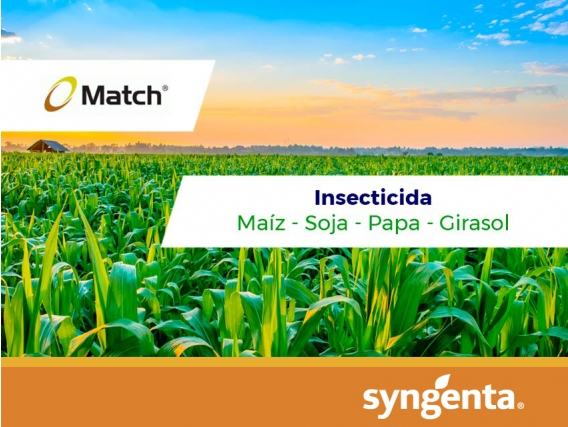 Insecticida Match  ®