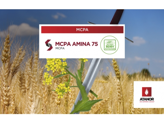 Herbicida MCPA Amina 75 - MCPA