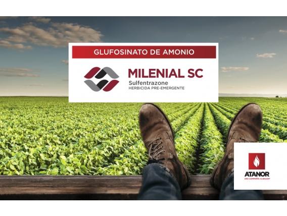 Herbicida Milenial - Sulfentrazone