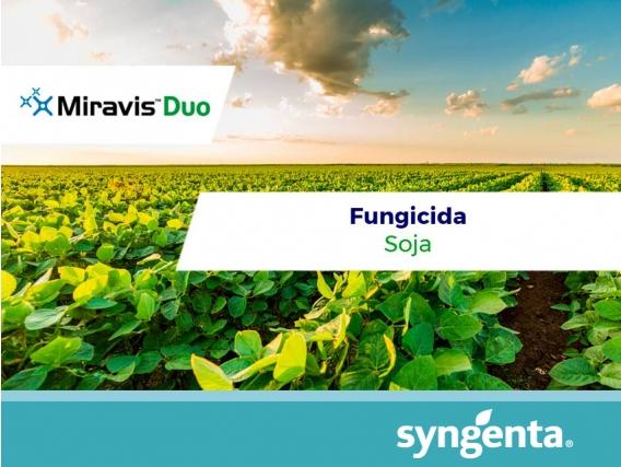 Fungicida Miravis Duo - Syngenta
