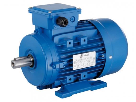 Motor Eléctrico Motorarg Mt160L1-4