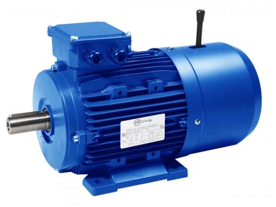 Motor Eléctrico Motorarg Mtb 132S-6