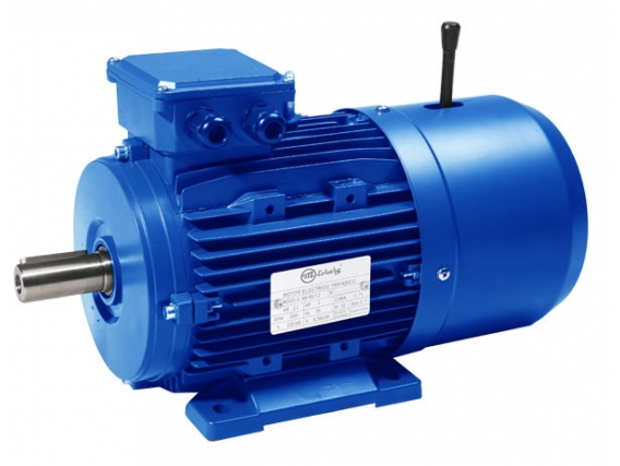 Motor Eléctrico Motorarg Mtb 90L1-2