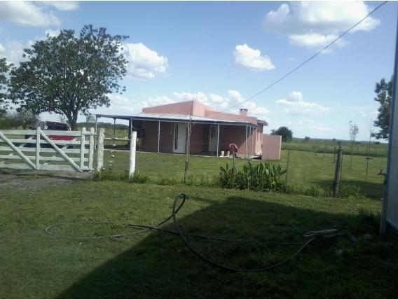 Muy Buen Campo Ganadero, Bovril Entre Rios