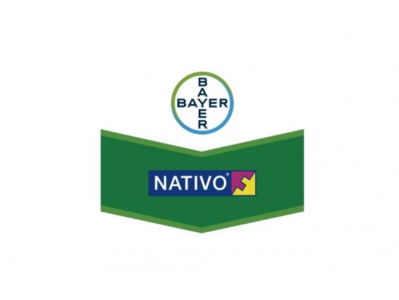 Fungicida Nativo Tebuconazole + Trifloxystrobin - Bayer