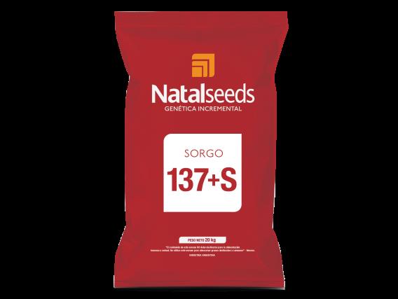 Sorgo 137+S