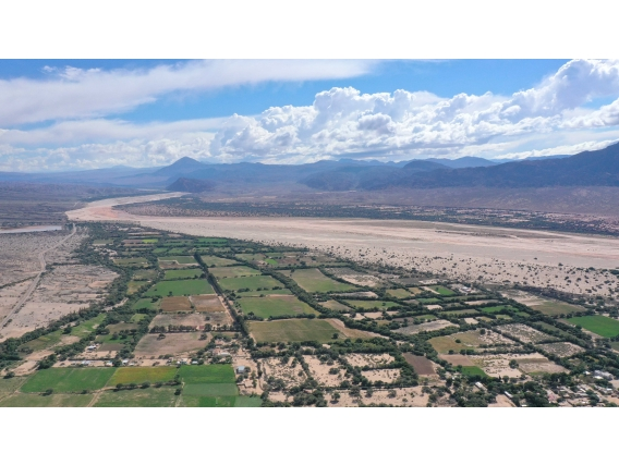 Pcia. De Salta - San Carlos 109 Has