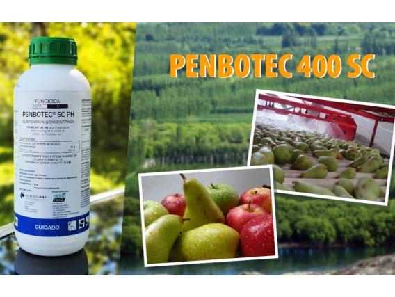 Fungicida Penbotec® 40 SC Agro Roca
