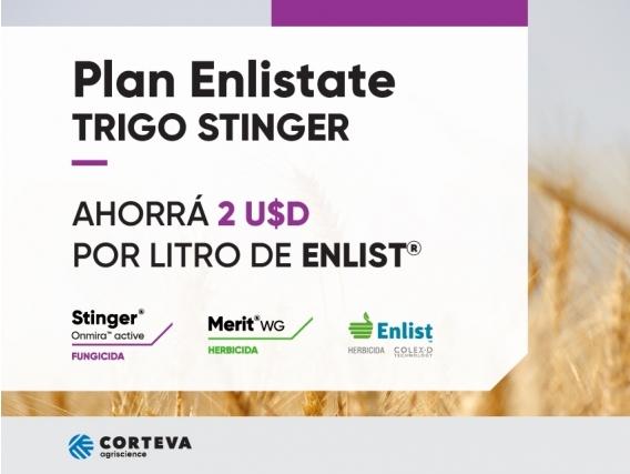 Plan Enlistate - TRIGO STINGER