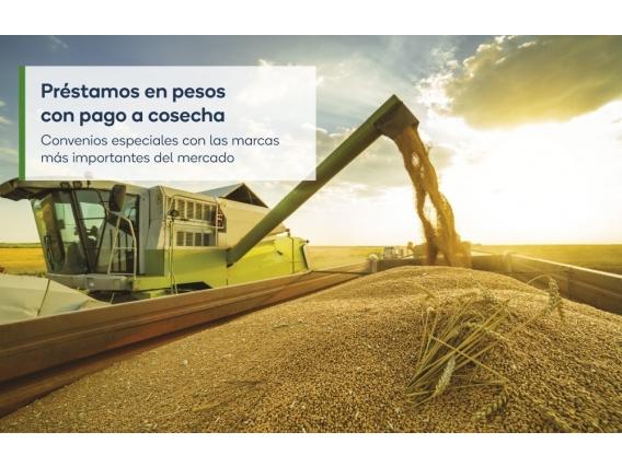 Préstamo En Pesos Con Pago A Cosecha - Monsanto Bioag