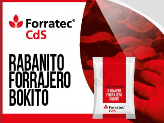 Rabanito Forrajero Bokito