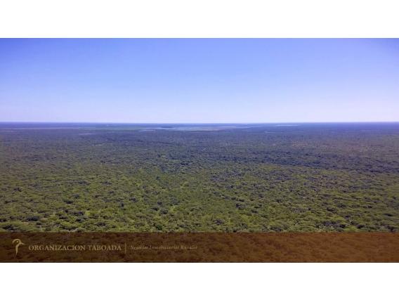 3000 Ha. Federal - Entre Ríos - Ganadero - Ref-430