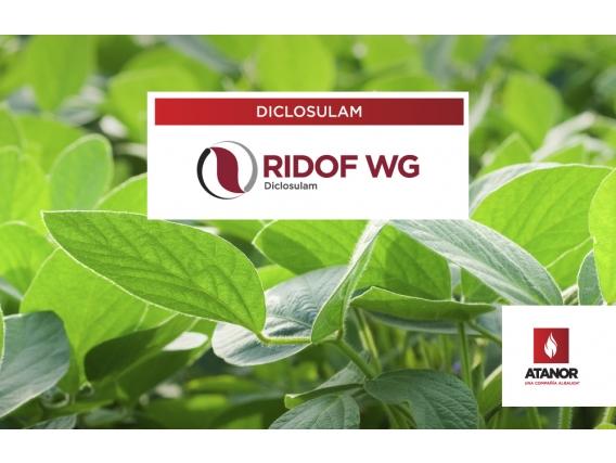 Herbicida Ridof WG - Diclosulam
