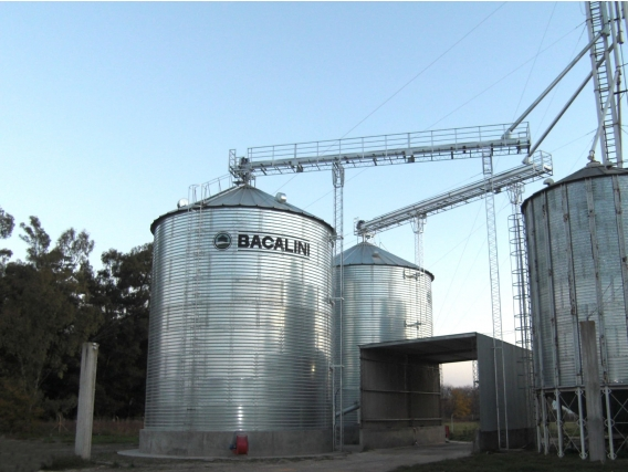 Roscas Transportadoras Bacalini