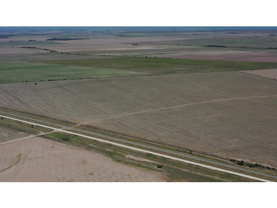 San Luis Naschel Agrícola S/autopista 640 Has