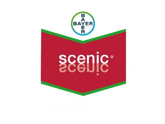 Fungicida Curasemilla Bayer Scenic®