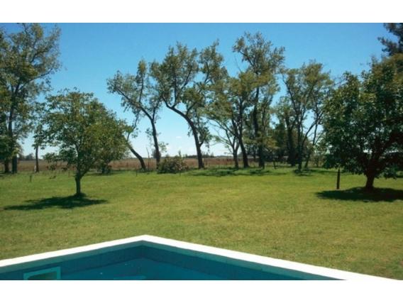 Campo En Venta. Ranchos. Bs. Aires. 333 Has. Mixto