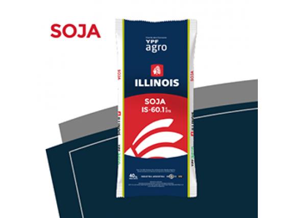 Soja Illinois IS-60.1 E / STS