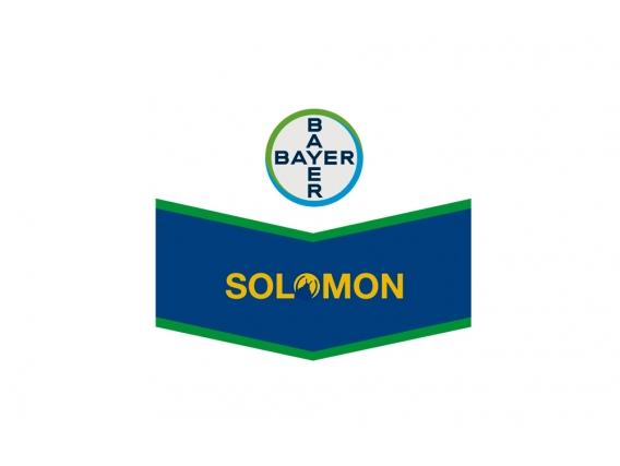 Insecticida Solomon® O-TEQ - Bayer