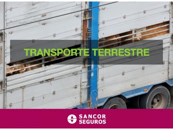 Seguro Transporte Terrestre