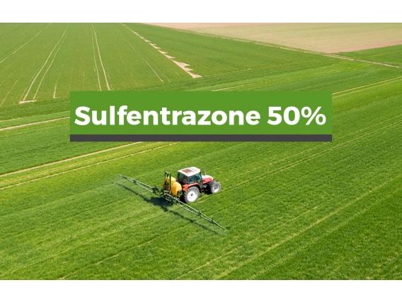 Herbicida Sulfentrazone 50%