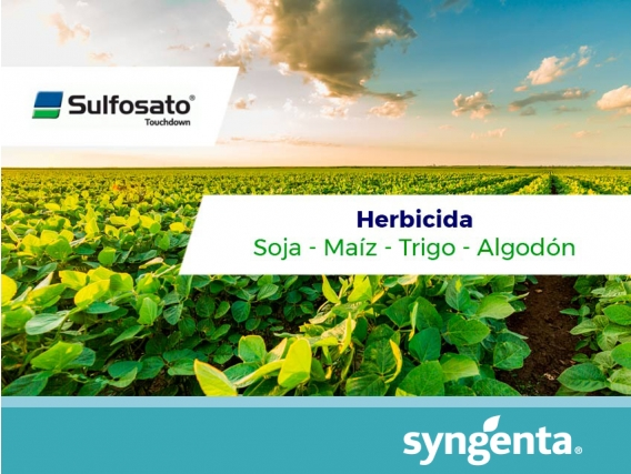 Herbicida Sulfosato Touchdown ®