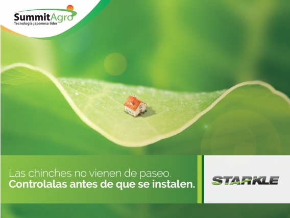 Insecticida Starkle Dinotefuran - SummitAgro