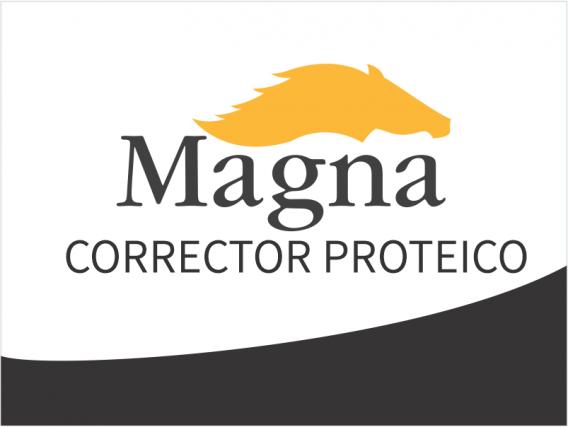 Suplemento Magna Equinos Corrector Proteico