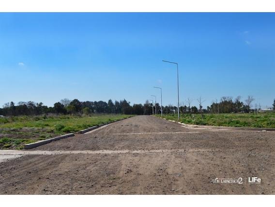 Terreno 246 M2 - Los Lapachos 2