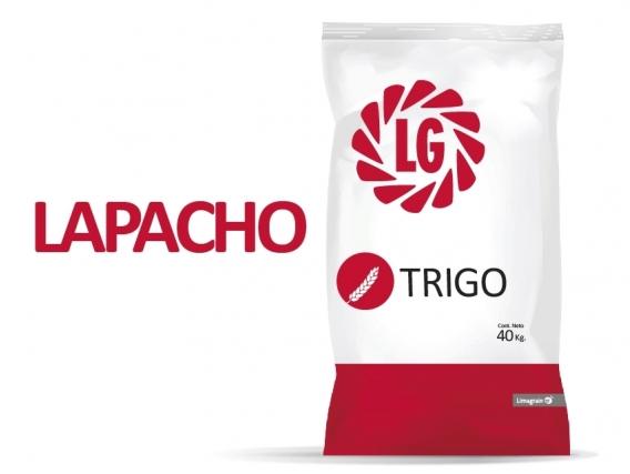 Trigo LG Lapacho