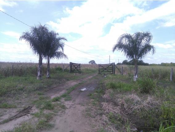 Campo de 113 has en La Leonesa, Chaco.