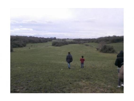 Campo De 40 Has En Rincón De Nogoyá, Entre Ríos.