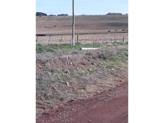 Vendo Campo Agricolo-Ganadero Sobre Ruta