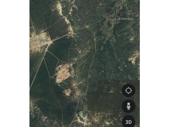 Campo de 560 Has En Los Telares, Santiago del Estero