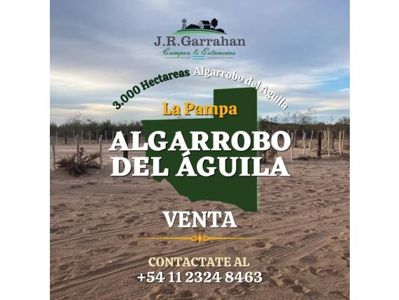 Venta / 3,000 Has Algarrobo Del Aguila
