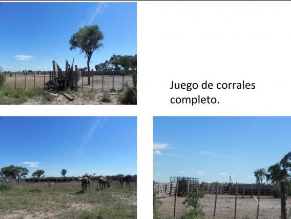 Venta Campo Ganadero 5700 Has. Sol De Julio