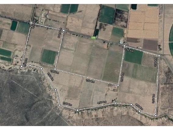 Campo de 114 has en Las Malvinas, Mendoza.