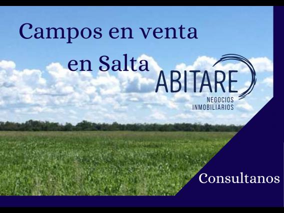 Venta De Campos En Salta - Consultanos