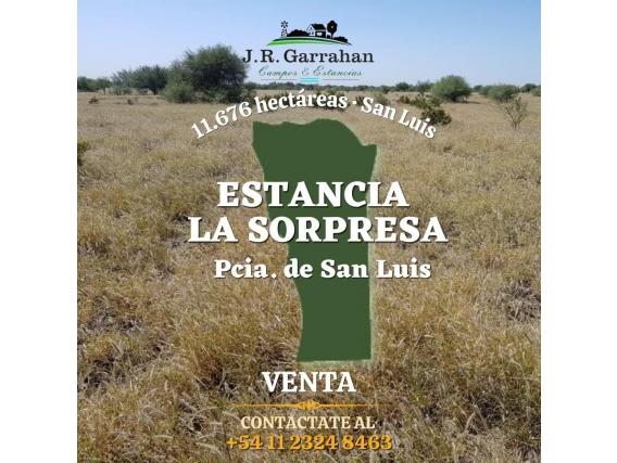 Venta Estancia 11,676 Has - San Luis
