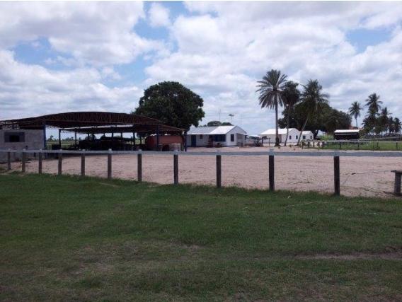 Vta 55.000 Has En Caceres - Mato Grosso Do Norte Brasil