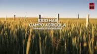 1000 Has Agrícolas, Provincia De Buenos Aires